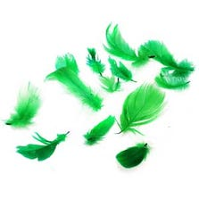 FEATHERS - GREEN