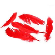 FEATHERS - RED *CZ