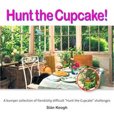HUNT THE CUPCAKE VISUAL BRAIN TEASERS BOOK